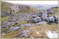 Limestone pavement in the Yorkshire Dales National Park